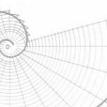 Giới thiệu các loại Fibonacci