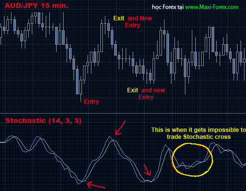 strategy5-maxi-forex