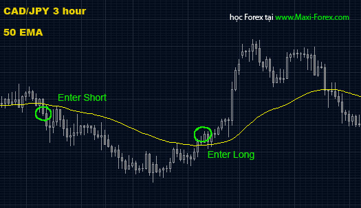 strategy8-maxi-forex