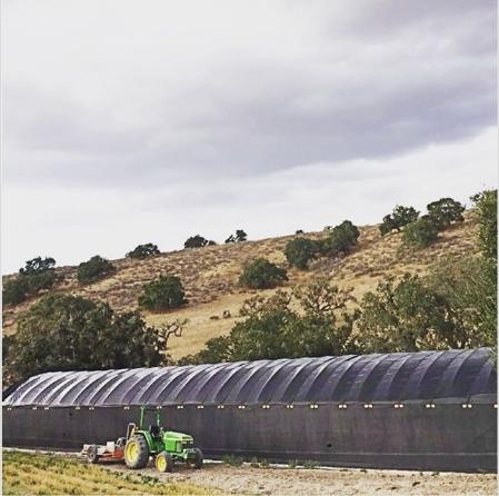 Nông trại hữu cơ của California Baby. Ảnh: CNBC